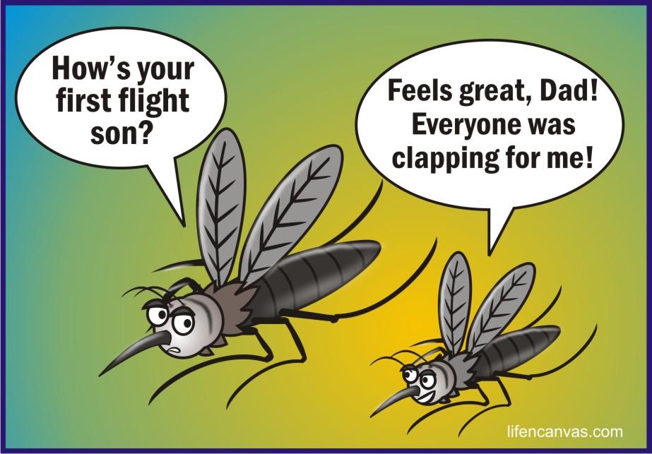 Mosquitoes Pictures Of Hilarious Quotes. QuotesGram